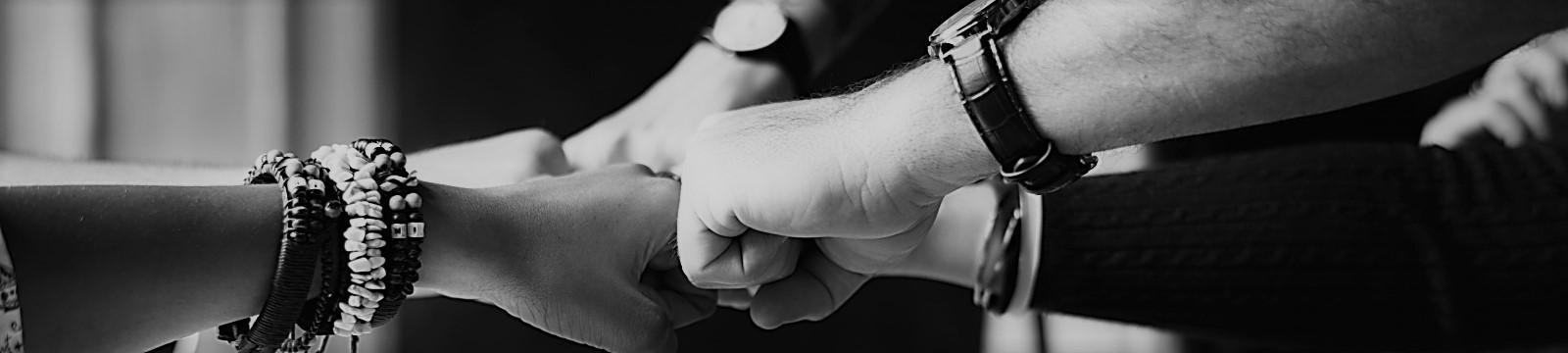 Thio bracelets collaboration colleagues 398532 1600x360 3